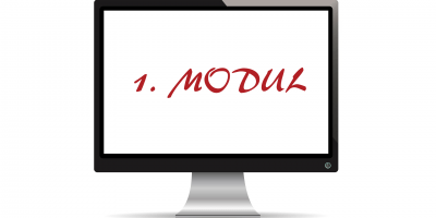 1 modul